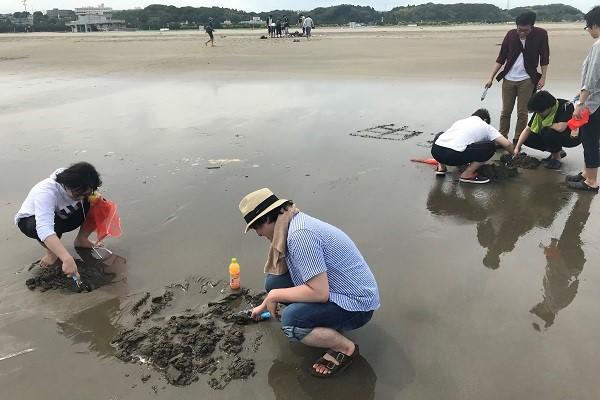 浜辺で潮干狩りをする風景(近景)
